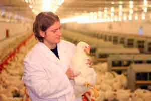 Doenças infecciosas de importância na agropecuária