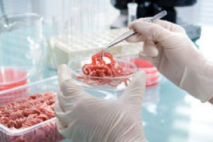 Introdução à Inspeção de Alimentos de Origem Animal