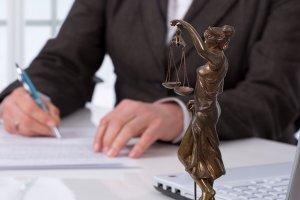 Introdução ao Direito de Petição