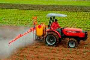 Auxiliar Agrícola